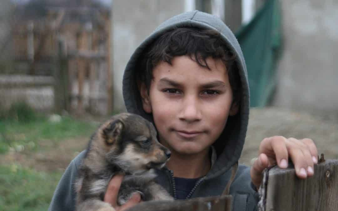 Fundamental Rights Agency and UNDP survey shows widespread Roma exclusion in the EU