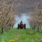 EU's agricultural policy can be reformed for better health, ENVI vote testifies