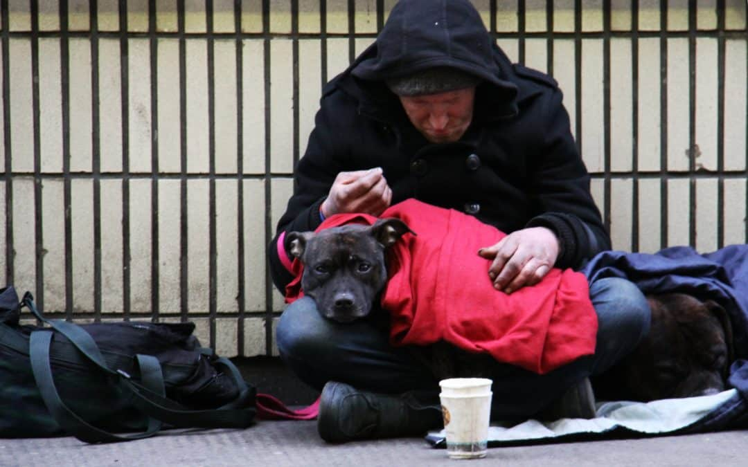 The impact of the COVID-19 crisis on homelessness