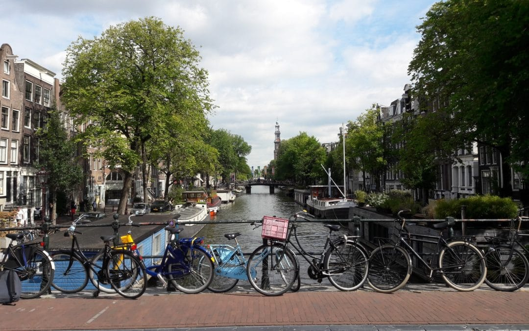 Make walking, cycling and public transport the primary modes in functional urban areas by 2030