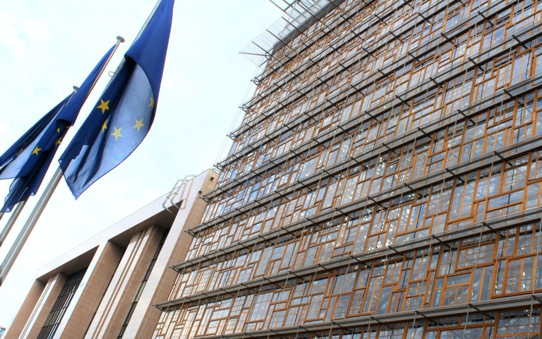 Member States step up commitment towards equality for Roma
