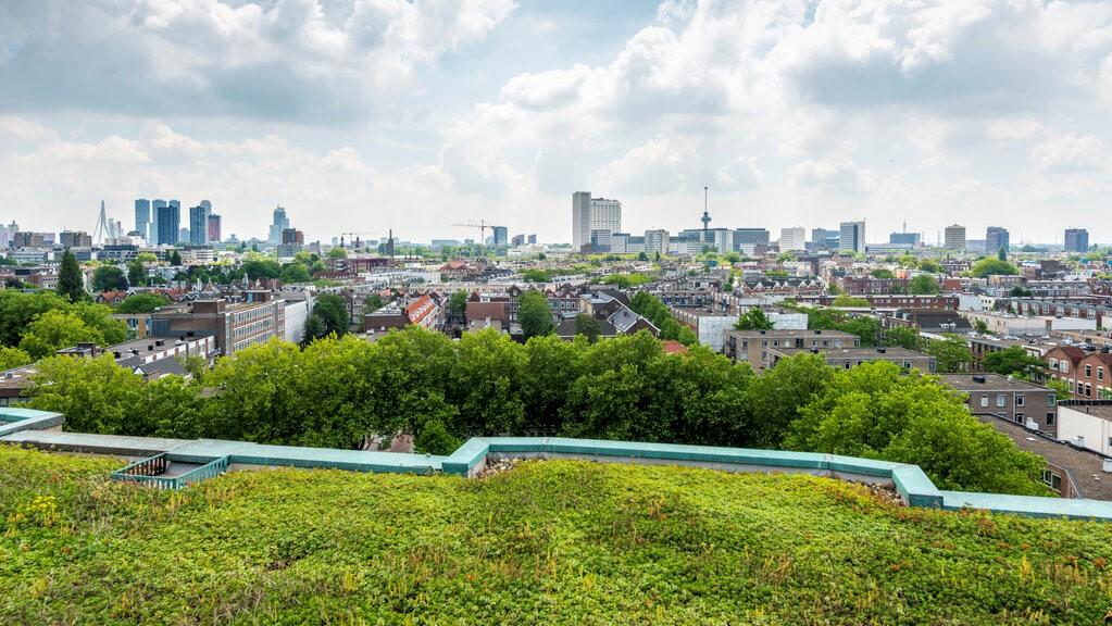 rotterdam financial district skyline