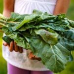 Diet and Food Systems for Health, Climate and Planet