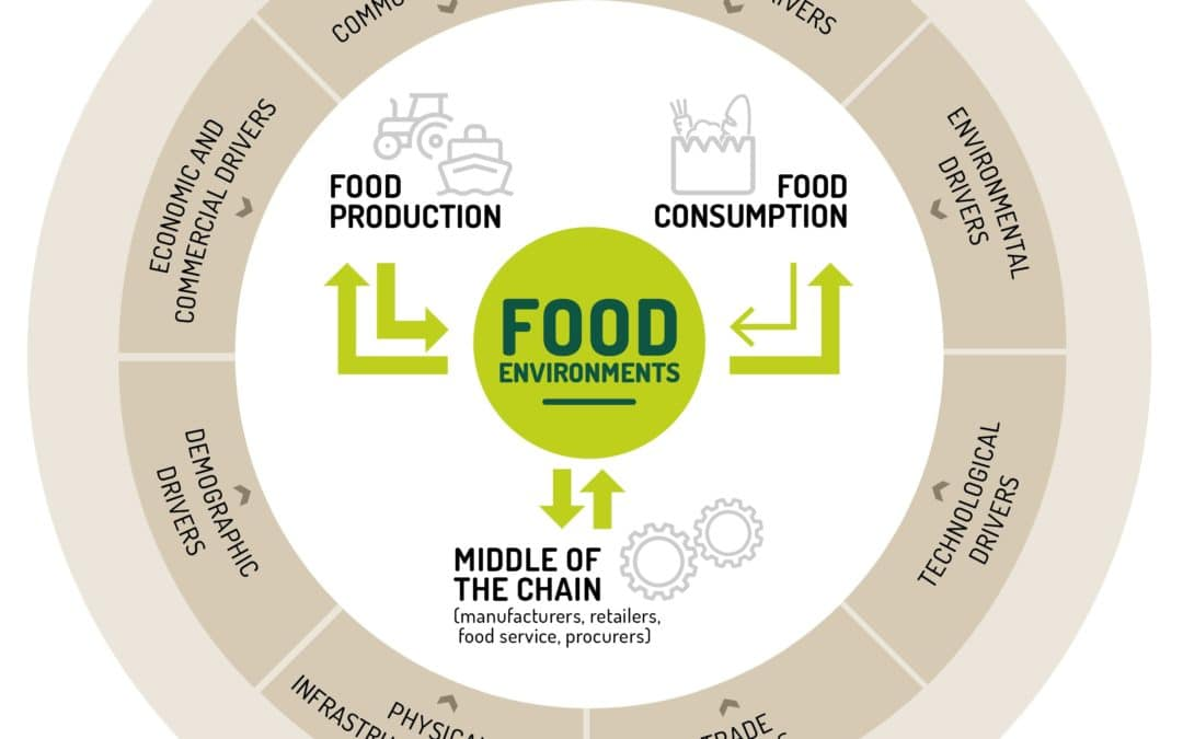 Policy briefing I Discovering the role of food environments for sustainable food systems